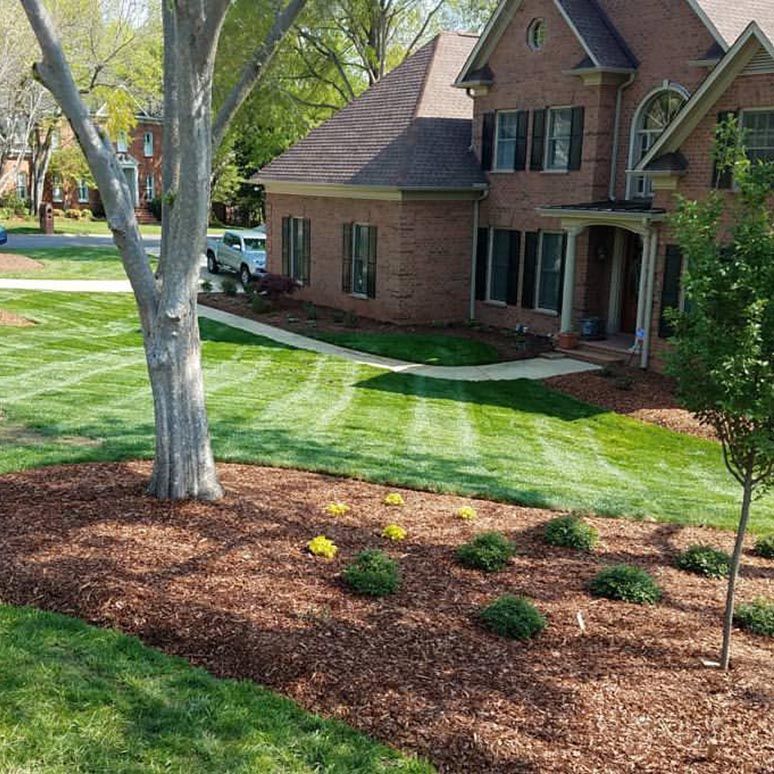 Carolina Greenscapes Lawn Maintenance